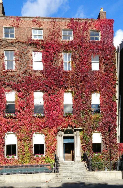 Dublin 02, Kildare Street and University Club